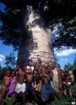 monde_madagascar_baobab_enfants_110