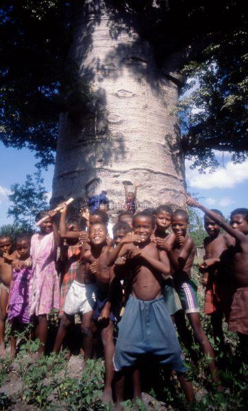 baobab_et_enfants_madagascar