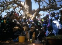 baobab_diass_senegal_002-2