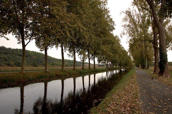 platanes_canal_route_bergerac_lalinde_hut_0106