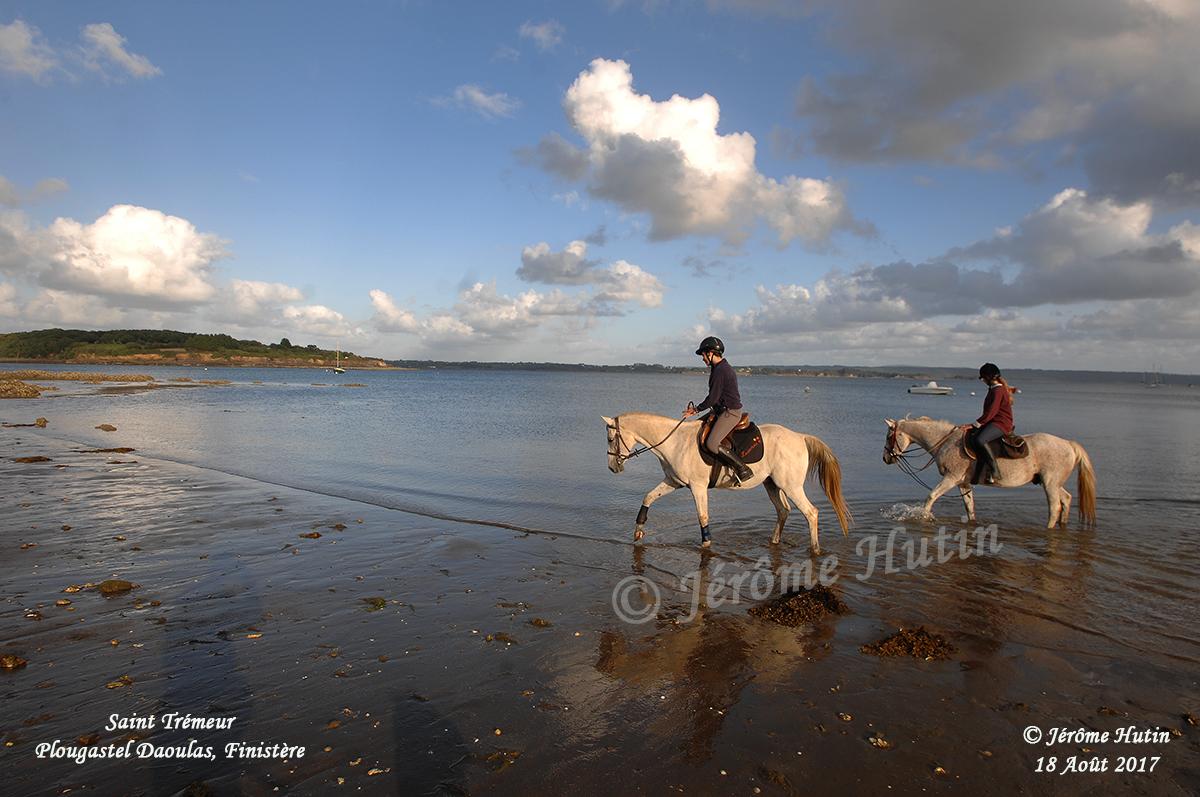 chevaux_plage_st_tremeur_plougastel_hut_1374web