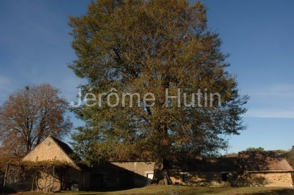 hut_0033